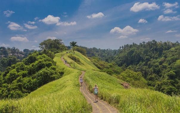 Campuhan-Ridge-Walk