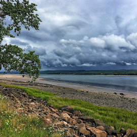 Annapolis royal  by Lise Bertrand - Landscapes Beaches