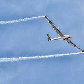 Glider at an air show by Joe Saladino - Transportation Airplanes ( airshow, airplane, smoke trails, glider, aerial acrobatics )