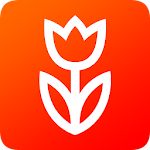 Flowwow: Цветы Icon