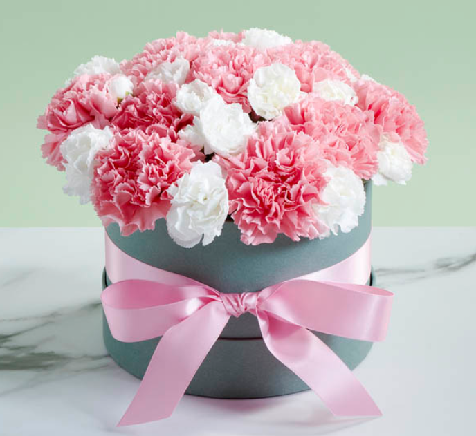 Exotic Flowers-Carnations