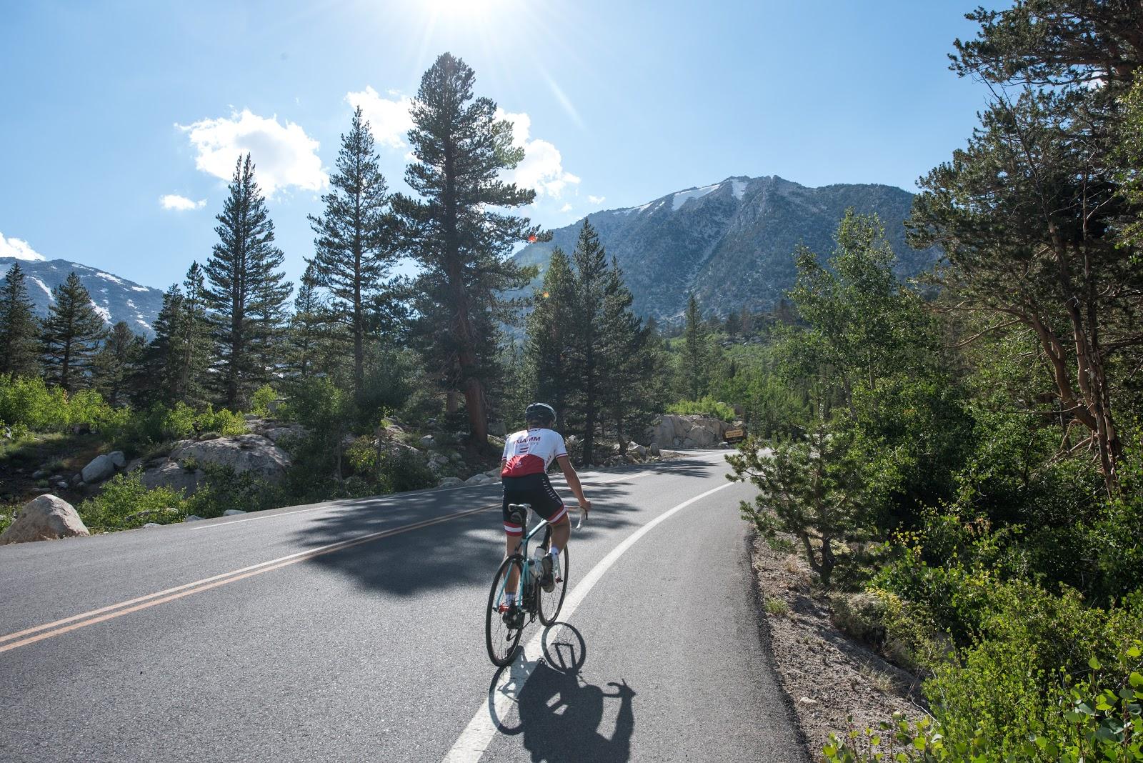 Cyclist climbing upper Rock Creek Road Owens Valley