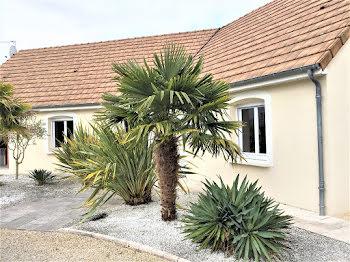maison à Les Montils (41)