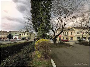 Photo: Turda - Piata Republicii - spatiu verde din fata Catedralei Ortodoxe, Ploaia de aur,   - 2019.03.25