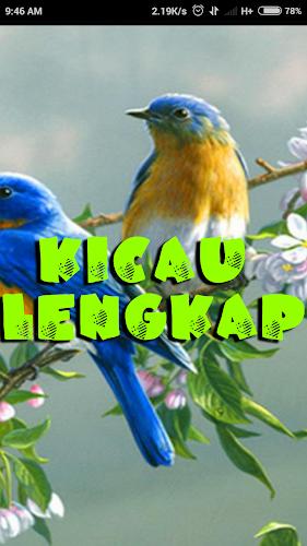 Download Kicau Jalak Hot Apk Latest Version App By Anggit G For