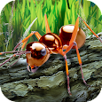 Ants Survival Simulator - go to insect world! apk