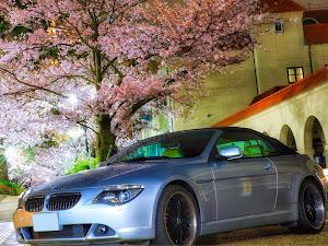 6シリーズ カブリオレ  650iのカスタム事例画像 ヨシユキさんの2020年04月01日19:59の投稿