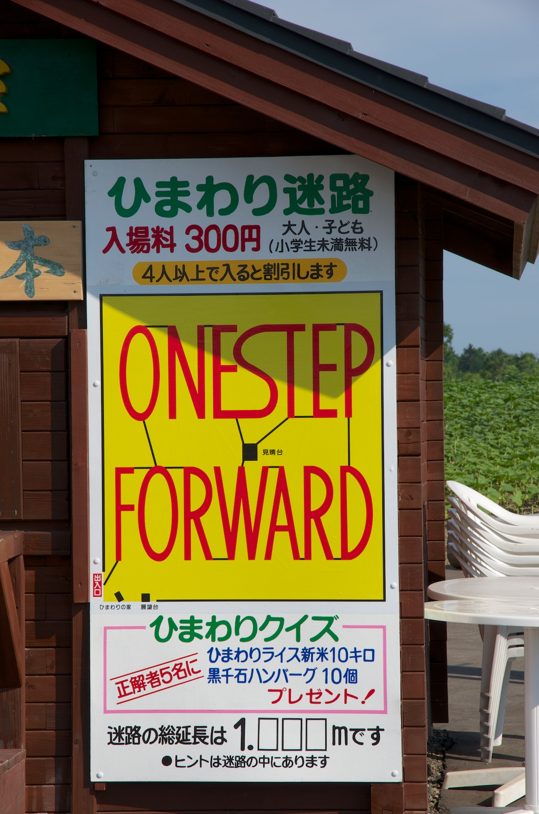 Photo: ひまわり迷路「ONE STEP FORWARD」