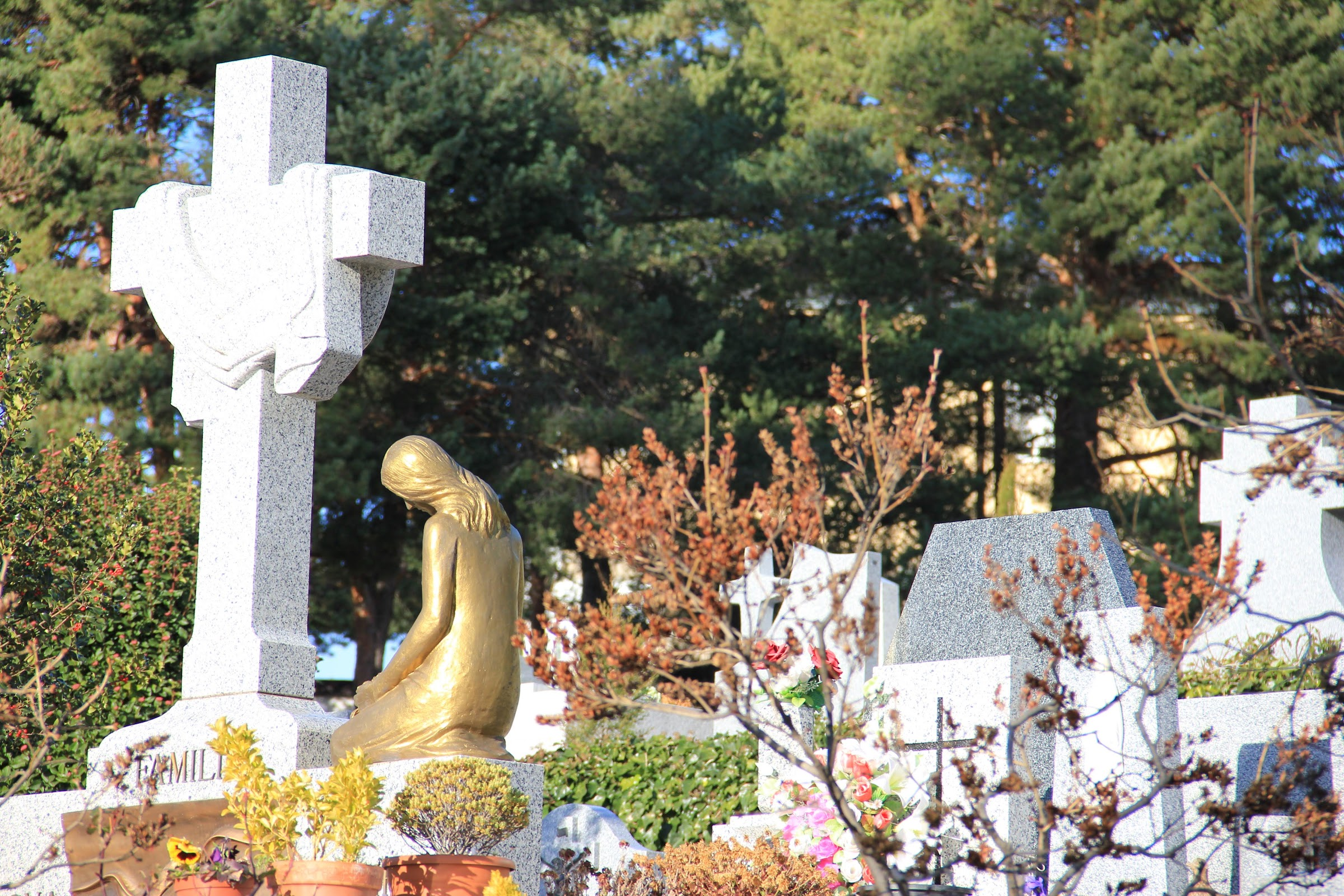 Cementerio y tanatorio