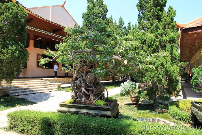 Пагода тьен вьен чук лам, Далат