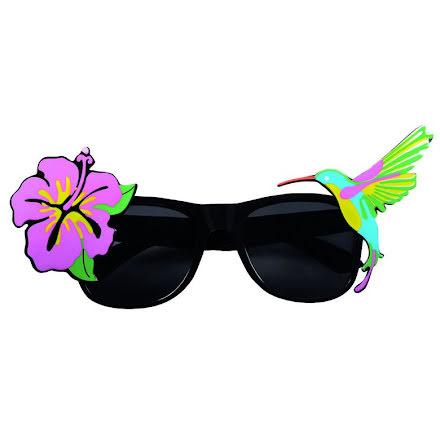Solglasögon, kolibri