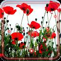 Summer Poppy LWP icon
