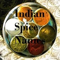 Indian Spices Names icon