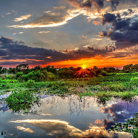Sunset Reflections by John Larson - Landscapes Sunsets & Sunrises ( sky, wetland, reflections, sunset, clouds, water, trees )