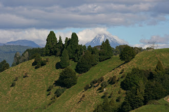 Photo: Blick auf den Ngauruhoe