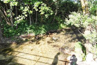 Photo: Rzeczka z czyściutka woda