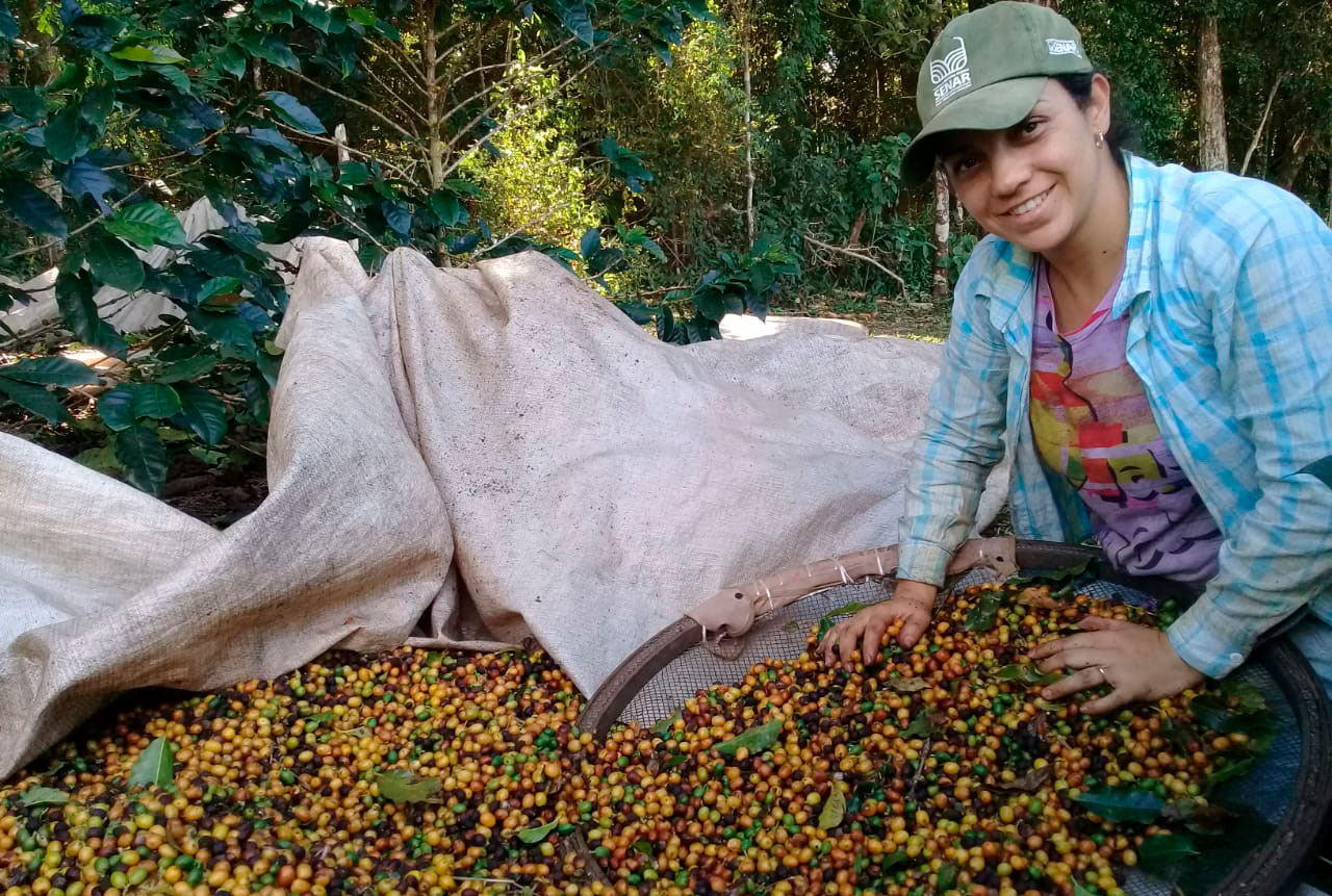 Mulheres são cerca de 19% dos produtores rurais brasileiros