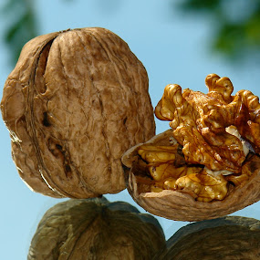 the walnuts by Sorin Lazar Photography - Food & Drink Fruits & Vegetables
