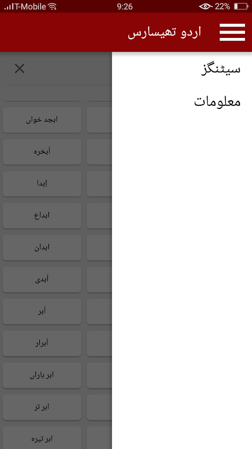 Urdu Thesaurus- screenshot