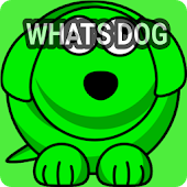 Whatsdog Last Seen