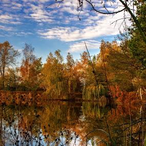 Autumn water mirror 4 by Jiří Valíček - Landscapes Waterscapes ( trees, miror, lake,  )