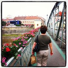 Photo: Downtown Lugoj, over the Timis bridge #intercer #romania #lugoj #timis - via Instagram, http://instagr.am/p/L1q6QhpfpU/