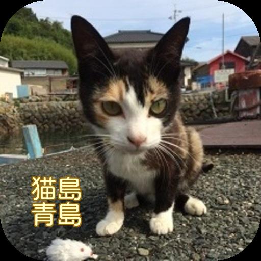 摄影の猫島 青島 写真集 Cat Photo collection LOGO-記事Game
