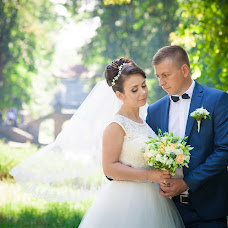 Wedding photographer Alena Shtofich (lari). Photo of 18.06.2017