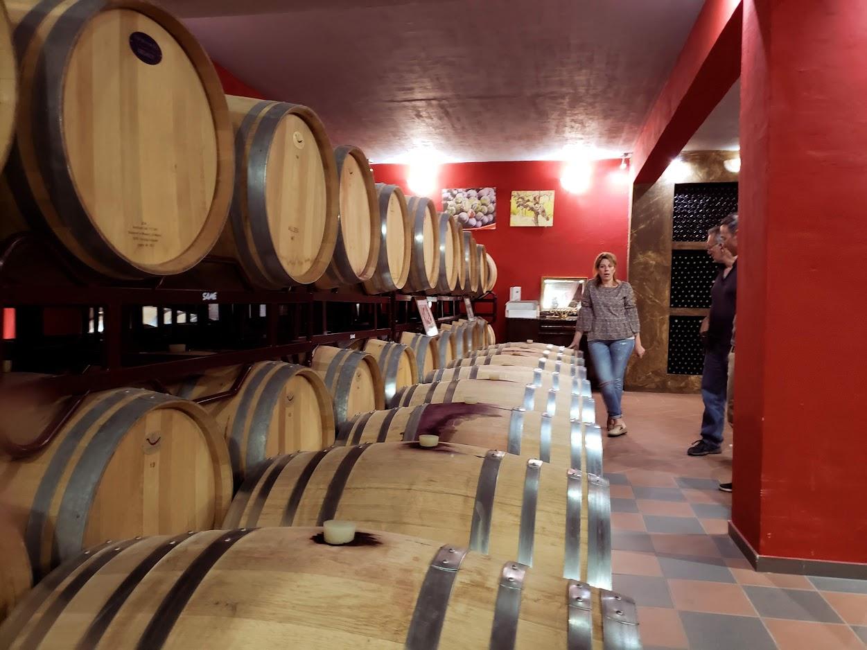 Wine celar, Wine tasitng, Wine tour, RealGreece