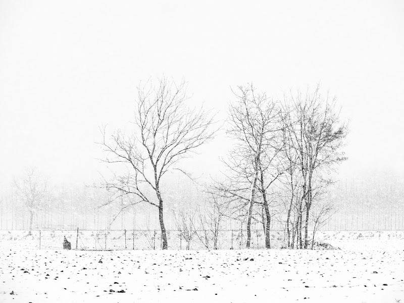 poesia d'inverno di mariellaturlon