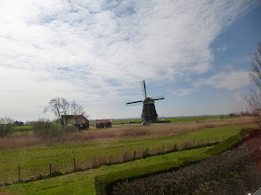 Photo: Windmill alert!