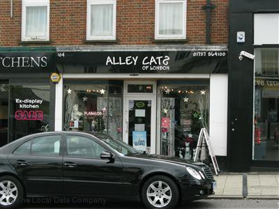 Alley Cats Hairdressers In St Albans