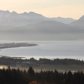 Morning Fog  by Patricia Phillips - Landscapes Weather ( alaska weather fog homer )