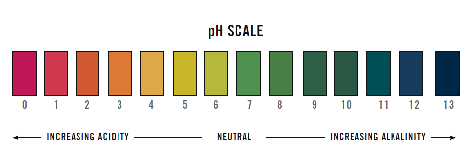 Image result for ph level color scale skincare