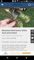 Screenshot of Bozeman Daily Chronicle