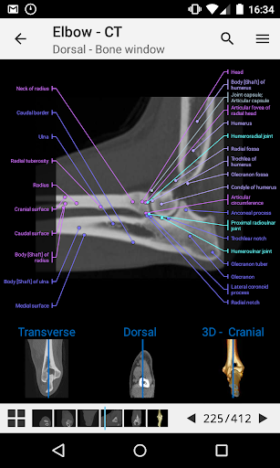 vet-Anatomy 1.18.0 screenshots 2