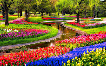 Photo: Keukenhof Gardens Desktop Background