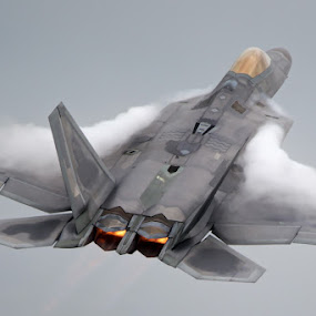 No Angel by Neil O'Connell - Transportation Airplanes ( f-22, aircraft, raptor, usaf )