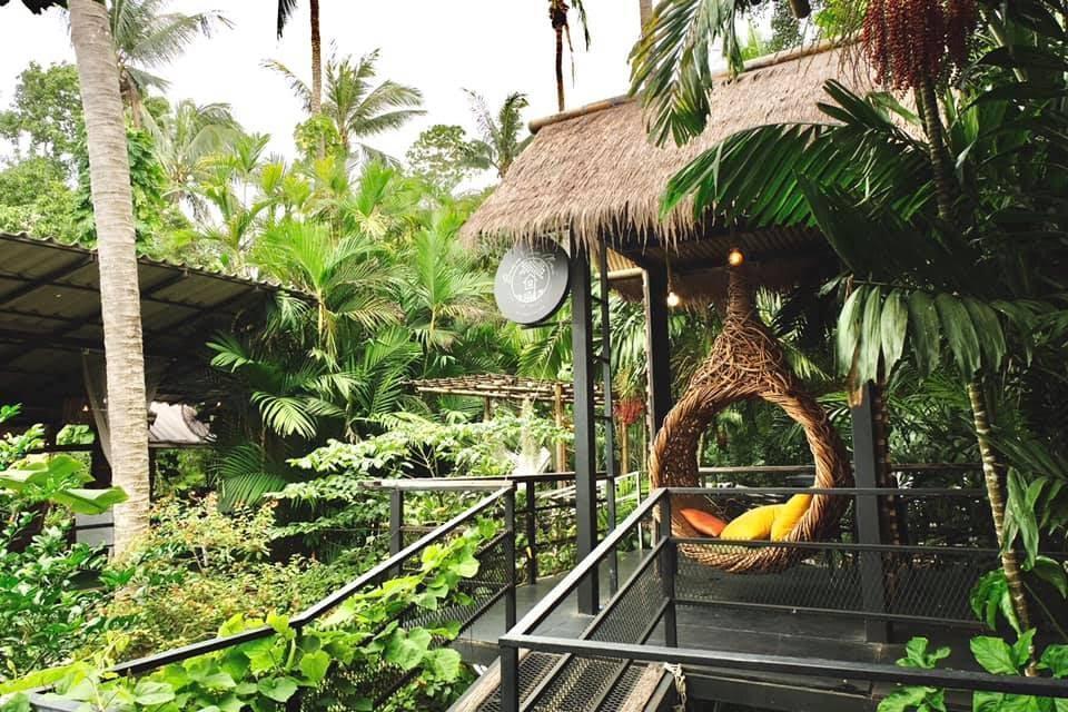 3. บ้านต้นไม้ คาเฟ่ กระบี่ Baan Ton Mai Cafe' Krabi