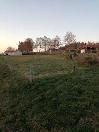 terrain à Raucoules (43)