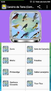 Chanchão Só Canto screenshot 3