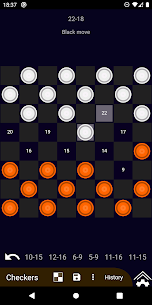 Chess & Checkers 4