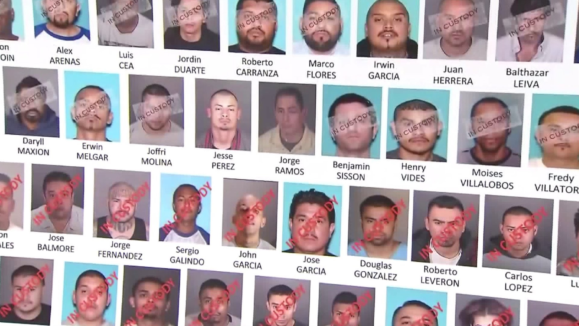 Media report ICE bust of violent gang members -- Spero News reveals citizenship status