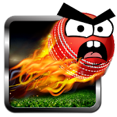 Cricket Game: Angry Style