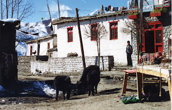 Photo: Lodge in Muktinath.