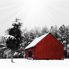 Red Barn by Dakota York - Public Holidays Christmas ( garyfonglandscapes, detail, winter, red, snow, quality, white, holiday photo contest, landscapes, photocontest,  )