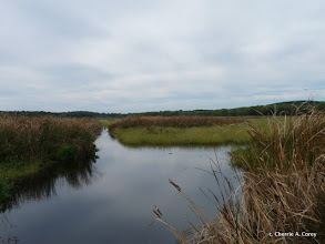 Photo: View west from lower impoundment