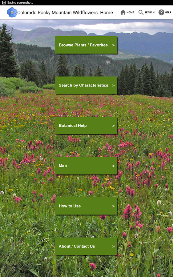 Colorado Rocky Mtn Wildflowers- screenshot