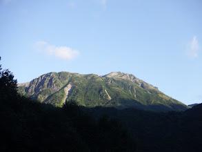 林道から抜戸岳(右)を仰ぐ