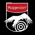 Schützenverein Pluggendorf